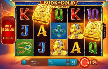 Slot Reels - Book of Gold: Multichance-Playson Mobile Slot Game