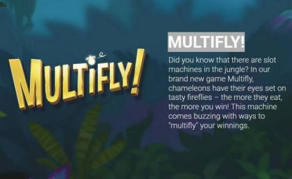 Info - Multifly!-Yggdrasil Mobile Slot Game