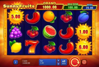 Slot Reels - Sunny Fruits Hold and win-Playson Mobile Slot Game