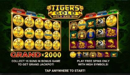 Info - Tiger's Gold: Hold and Win-Booongo Mobile Slot Game