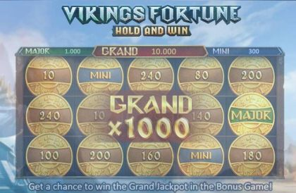 - Vikings Fortune: Hold and Win- Mobile Slot Game
